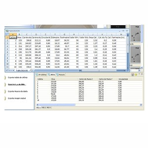 Software LABIMAGE CC Tabela
